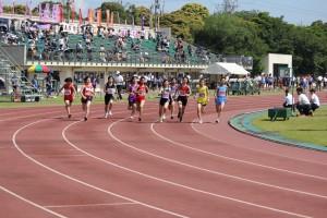 女子共通800mを皮切りに競技が始まりました