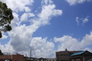 外は、台風一過の空模様