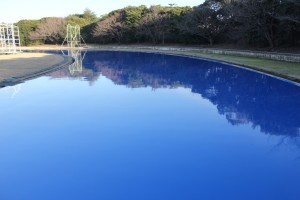 ウレタン上塗り層 艶やかなブルー